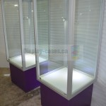 Museum Tower Display Cases